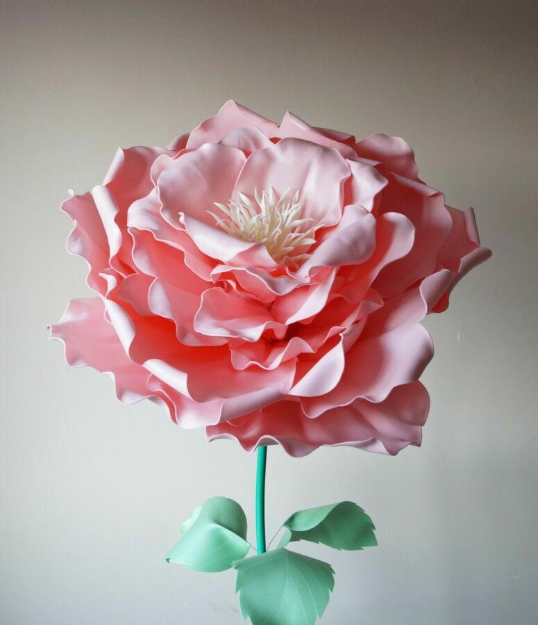 Пионовидная роза с изолона (ростовые цветы) продажа/аренда