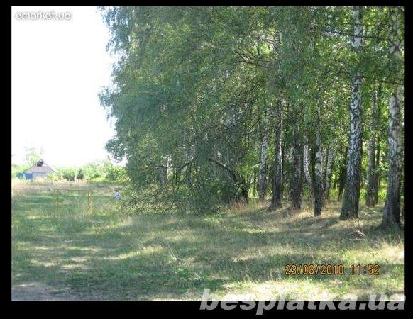 Фото - Продам земельный участок под застройку