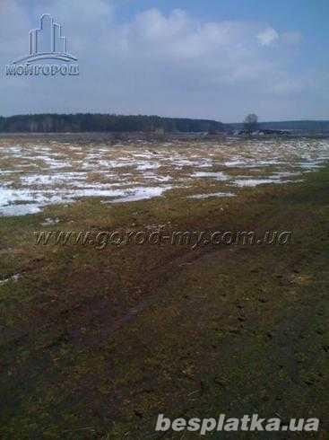 Фото - Участок 2 Га под коттеджи в Макаровском р-не Киевской области