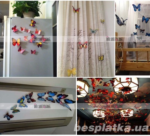 Фото - Стикер  -  бабочки (наклейки- магниты) различные цвета