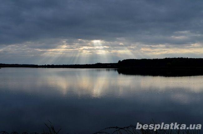 Фото 4 - Продам озеро 104га с рыбой в Бородянке