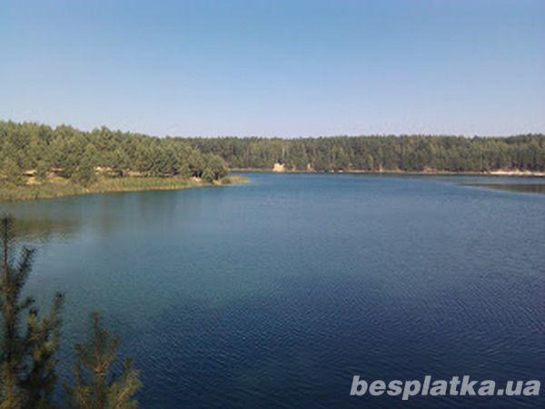 Фото - Продам озеро 104га с рыбой в Бородянке
