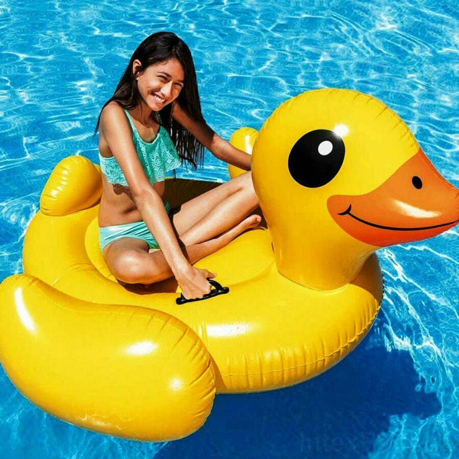 Duck adult floatation