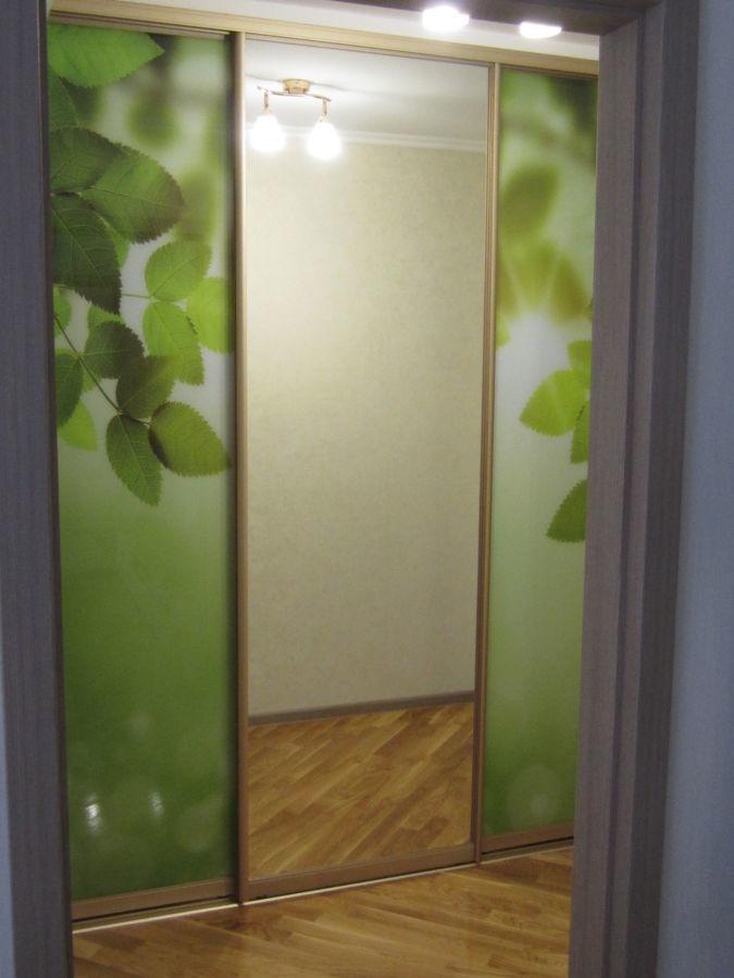 Двери для шкафов купе с фотопечатью на заказ в Запорожье.