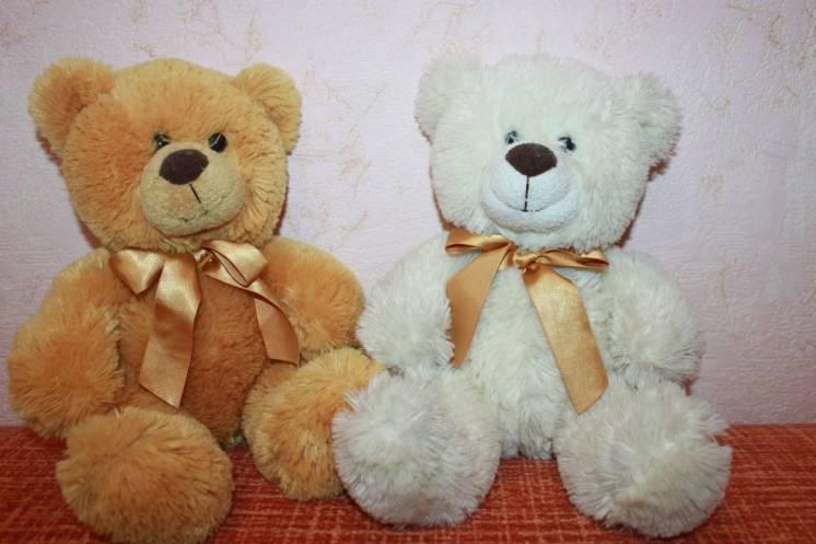 Пара замечательных медвежат