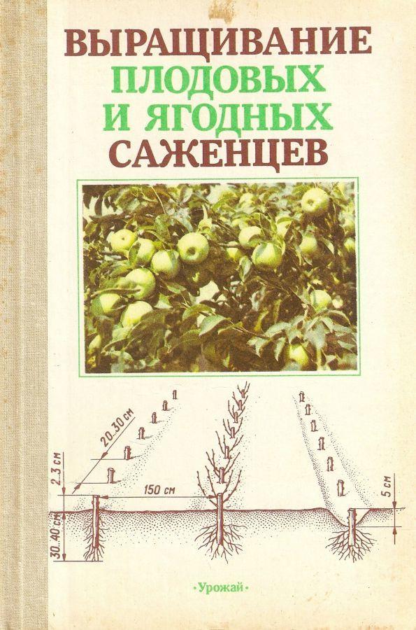 Выращивание плодовых и ягодных саженцев  В.И.Майдебуры
