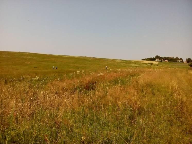 Продам земельну ділянку в с.Макотерти (Рівненський р-н)