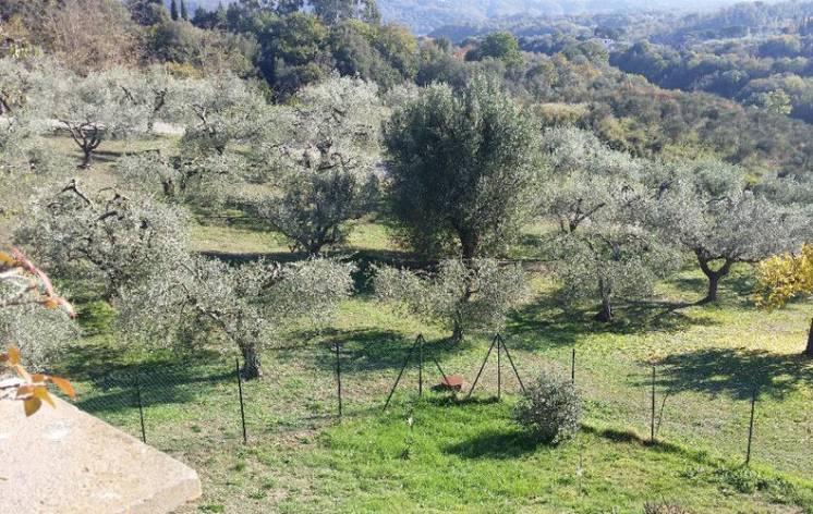 В Италии возле Рима и озера Браччиано панорамная усадьба.