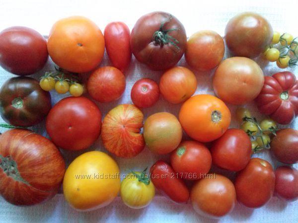 Семена томатов, частная коллекция , более 150 сортов