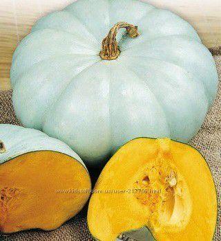 Семена универсального сорта тыквы Волжская серая