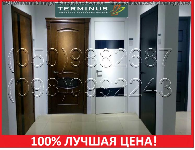 Двери межкомнатные терминус 100% лучшая цена!/ двері міжкімнатні