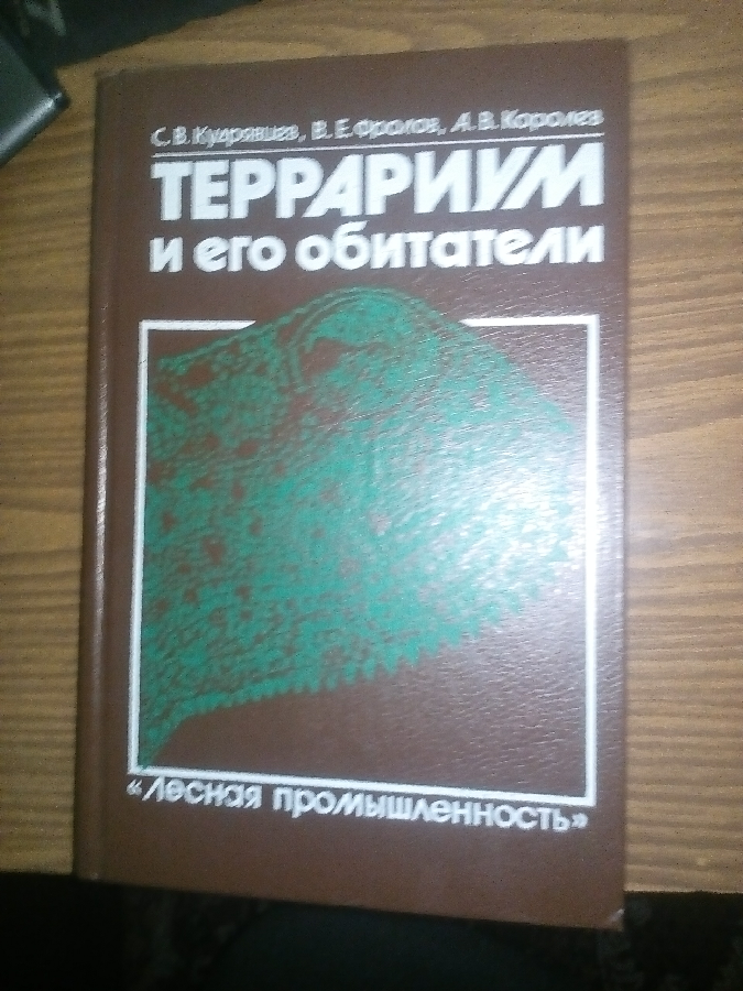 Террариум и его обитатели