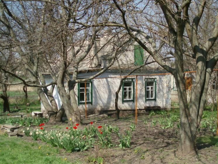 Продам дом в райцентре Кринички Днепропетровской обл.