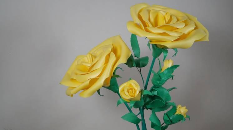 Куст желтой розы (огромные цветы) продажа/аренда