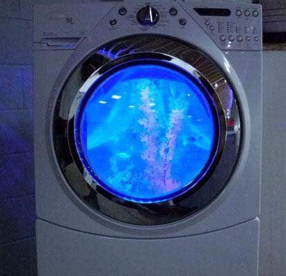 Ремонт стиральных машин посудомоечных машин