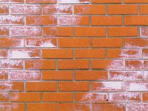 Очиститель фасадов от высолов на минеральных поверхностях Wlagi.net OF