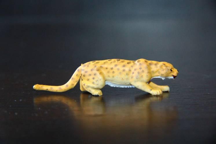 животные Britains АНГЛИЯ леопард