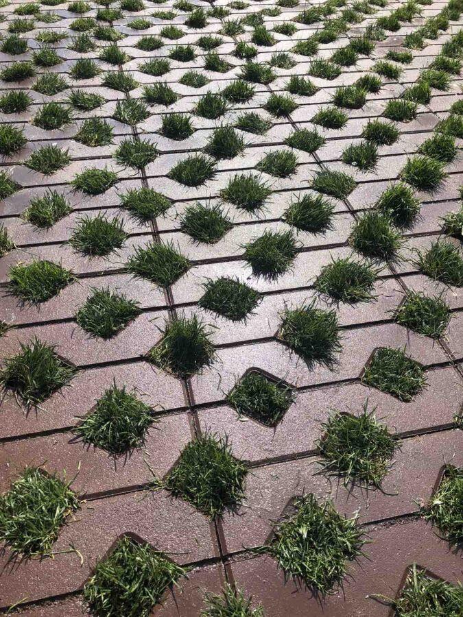 Укладка тротуарной плитки Днепр