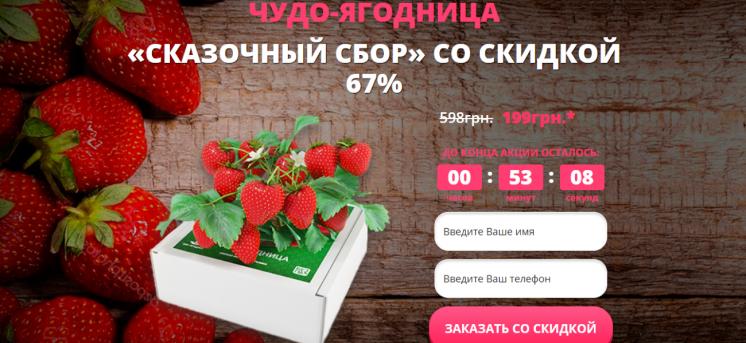 Домашняя ягодница Сказочный сбор КЛУБНИКА И ЗЕМЛЯНИКА