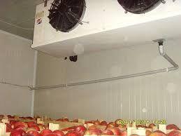 Камера для зберігання яблук, груш, слив, черешень