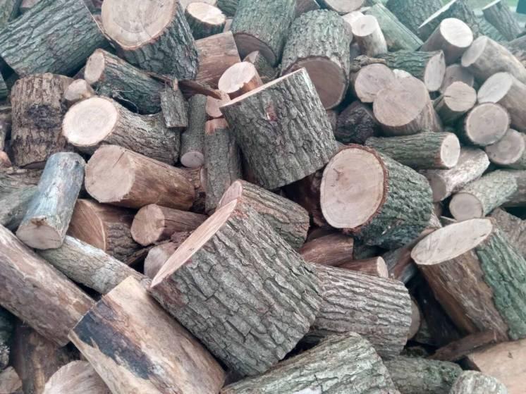 Продам дубовые дрова