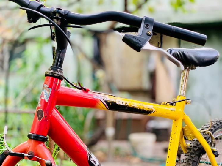 Велосипед А р д и с