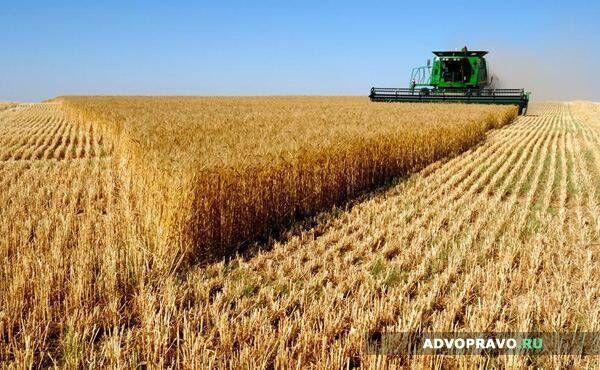 Аренда земли сельхоназначения