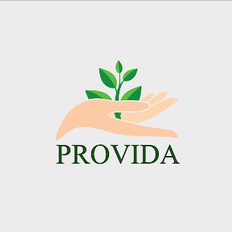 Provida - это команда молодых юристов