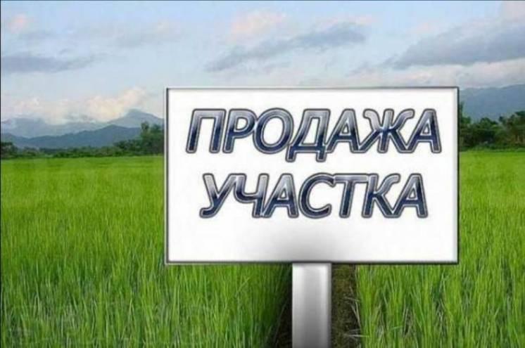 Продам участок земельный. 25 соток в селе Петрово Кировоградской облас