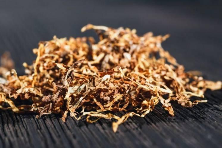 Форум где купить табак оптом купить табак для сигарет дешево нижний новгород