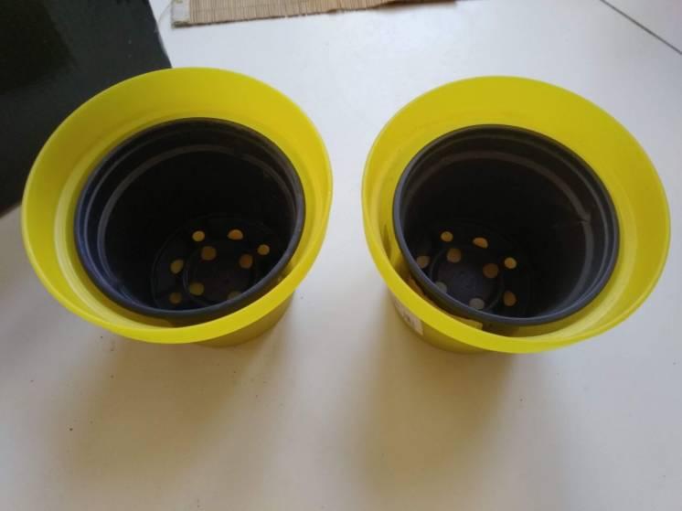Горшок черный для цветов с желтым горшок без дырок можно для рассады