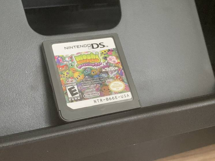 Nintendo DS Moshi