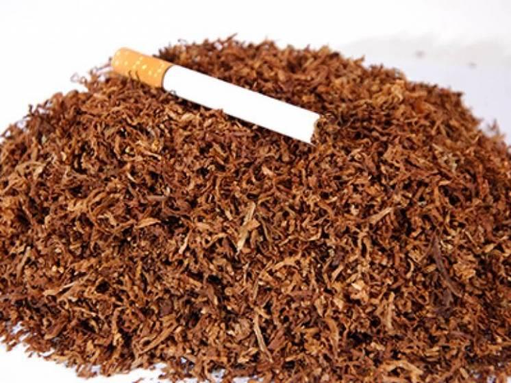 табак и табачные изделия ассортимент