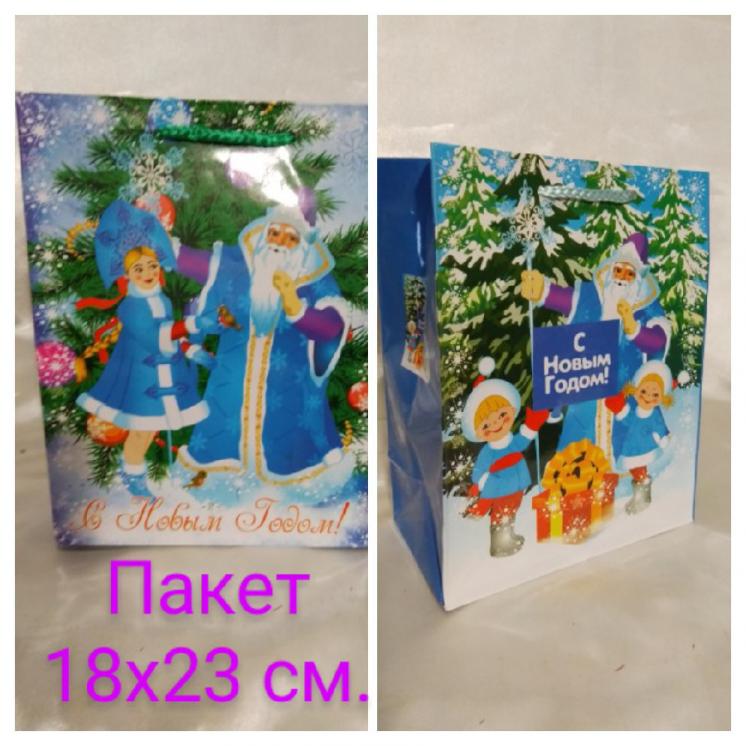 Пакет подарочный Новогодний 18х23 см.