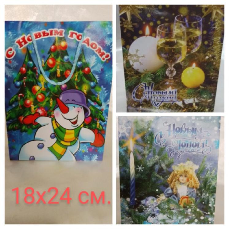 Пакет подарочный клеёнчатый Новогодний 18х24 см.