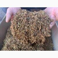 Табак для Сигаретных гильз. ТЮТЮН отличного качества