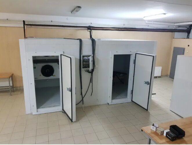 Холодильные морозильные камеры для заморозки Черники малины