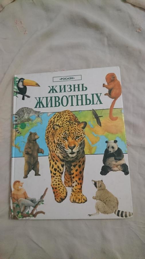 Жизнь животных энциклопедия для детей