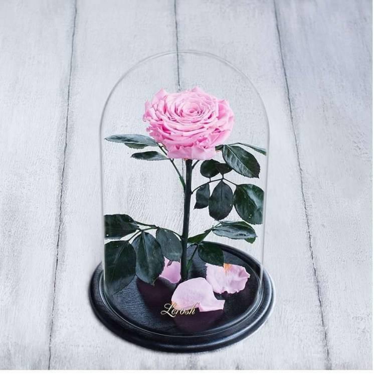 Стабилизированная роза в колбе Lerosh - Lux 33 см, Розовая