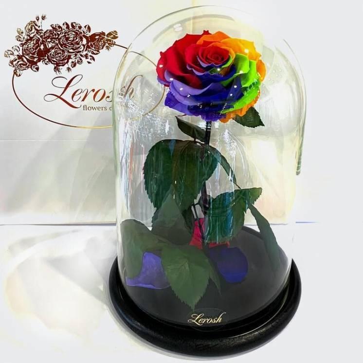 Яркая Радужная роза в колбе Lerosh - Lux 33 см