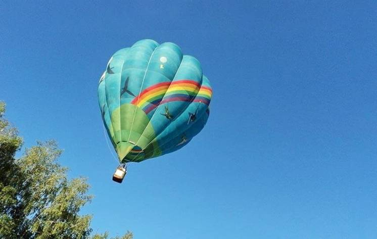 Полет на воздушном шаре Птички аренда воздушного шара