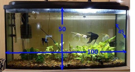 Немецкий панорамный аквариум 230л со всем оборудованием на подставке