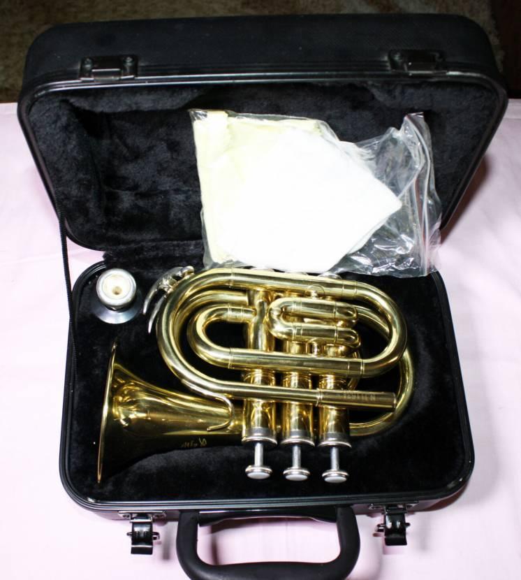 Новая Труба карманная STAGG 77-MT !