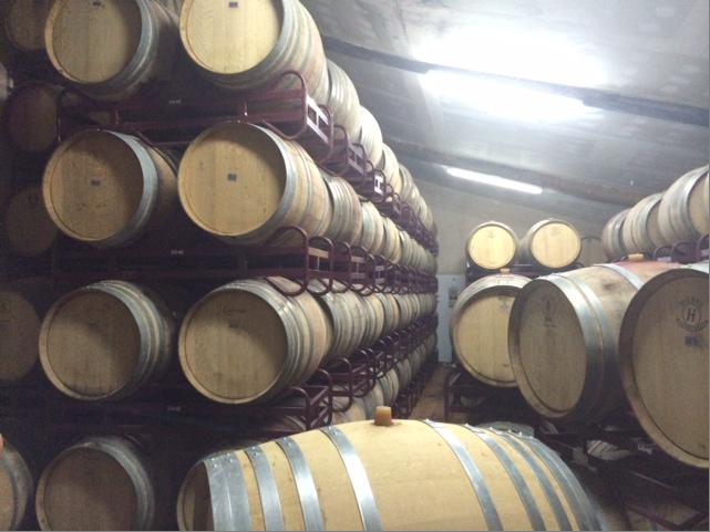 Фото 7 - Продажа винного завода в Испании