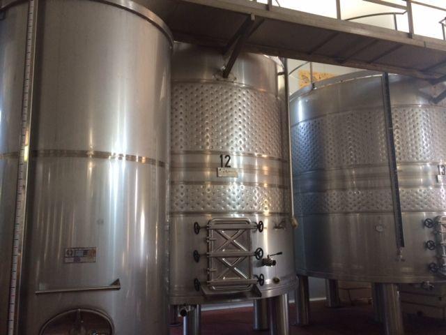 Фото 5 - Продажа винного завода в Испании