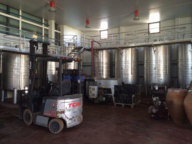 Фото 2 - Продажа винного завода в Испании