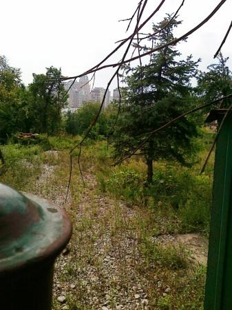 Фото 4 - Печерск 21 сотка продажа участка