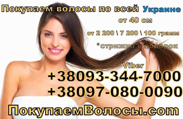 ООО куплю - продать волосы украина  продать волосы дорого