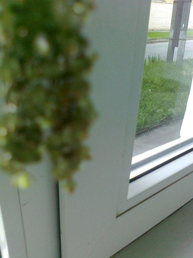 Фото - Красивые серьги из  хризолита  в виде гроздьев винограда