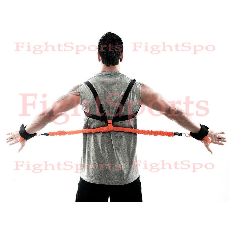Фото 2 - Жгуты Cobra Pro MMA - оплата при получении, качество гарантируем!
